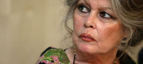 french-movie-star-brigitte-bardot-seen-during-a-news-conference_5087582